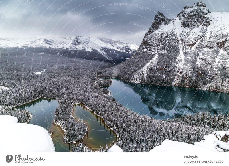 Lake O'Hara Ferien & Urlaub & Reisen Natur Landschaft Wolken Wald Winter Ferne Berge u. Gebirge kalt Schnee Tourismus Freiheit See Ausflug wandern Abenteuer