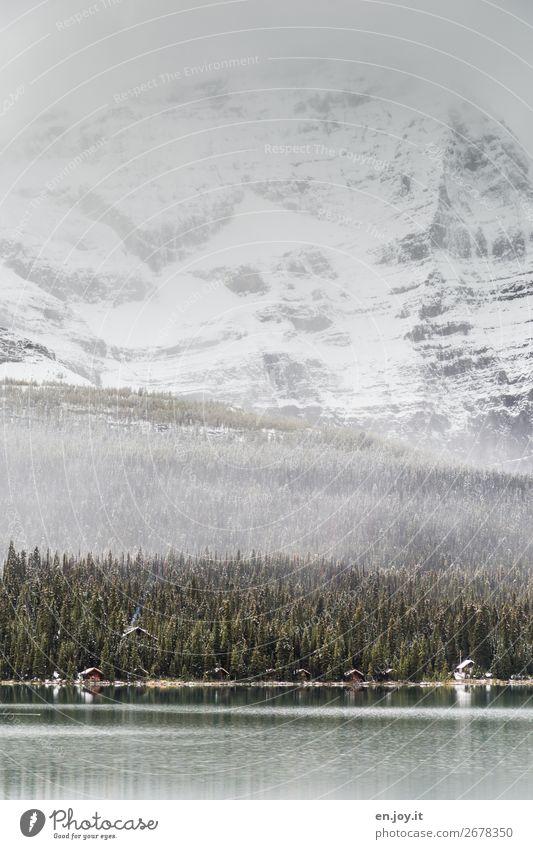Schöner wohnen Ferien & Urlaub & Reisen Tourismus Ausflug Abenteuer Winter Schnee Winterurlaub Berge u. Gebirge Umwelt Natur Landschaft Klima Klimawandel Nebel