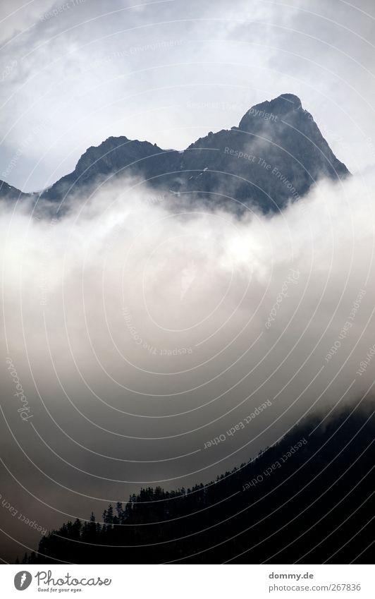 ende Umwelt Natur Landschaft Pflanze Himmel Wolken Baum Felsen Berge u. Gebirge Gipfel Stein blau Schweiz kalt Wald hoch dunkel bedrohlich klein Freiheit