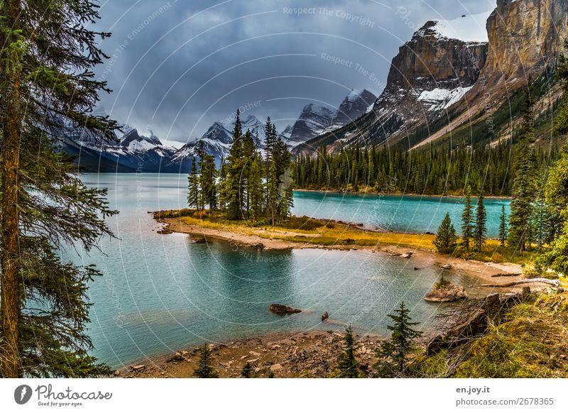 Trauminsel Ferien & Urlaub & Reisen Ausflug Abenteuer Expedition Berge u. Gebirge Natur Landschaft Wolken Gewitterwolken Herbst Wald Gipfel