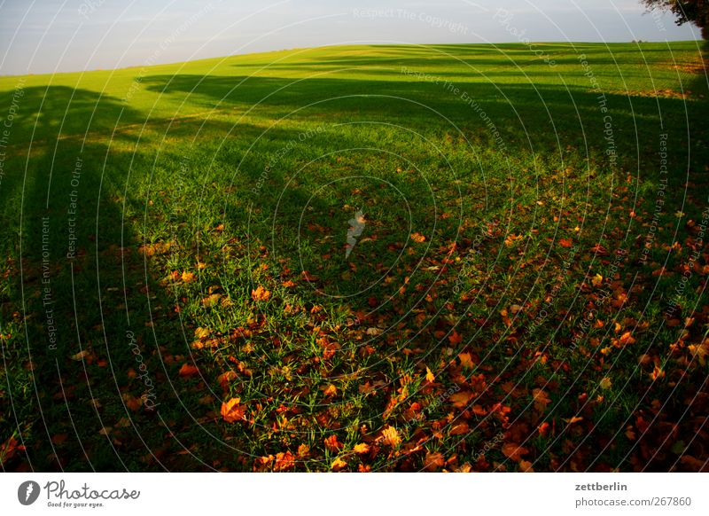 Weit Natur schön Pflanze Blatt Ferne Umwelt Landschaft Wiese Herbst Gras Erde Wetter Feld Klima Urelemente gut