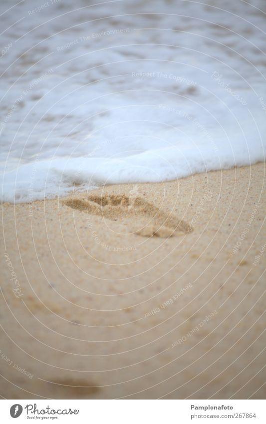 Natur Ferien & Urlaub & Reisen Sommer Meer Strand ruhig Erholung Leben Sand Gesundheit Schwimmen & Baden Urelemente Lifestyle Wellness Fußspur Wohlgefühl