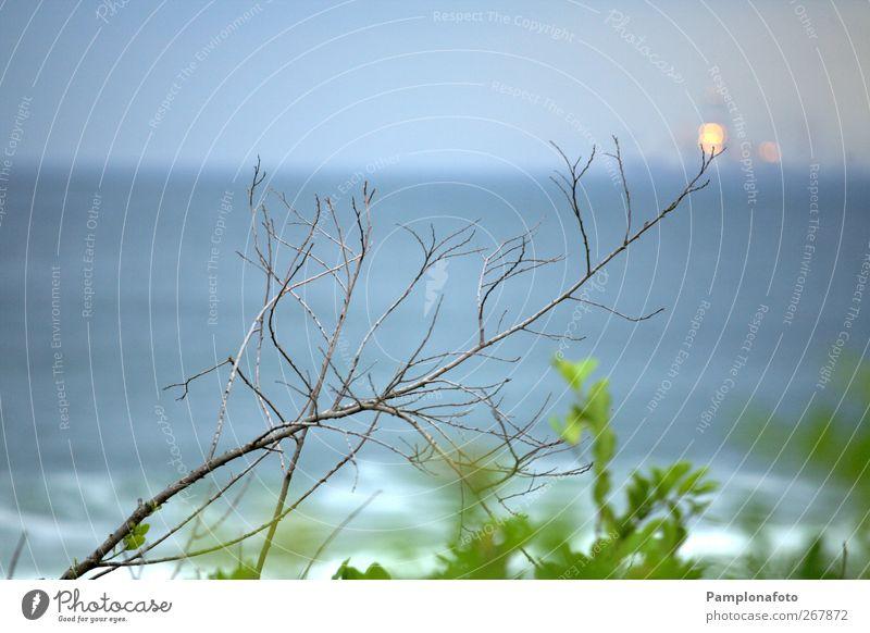 Natur Pflanze Sommer Wasser Erholung Meer Landschaft ruhig Strand Küste Garten Horizont Energiewirtschaft Wellen Erde Ausflug