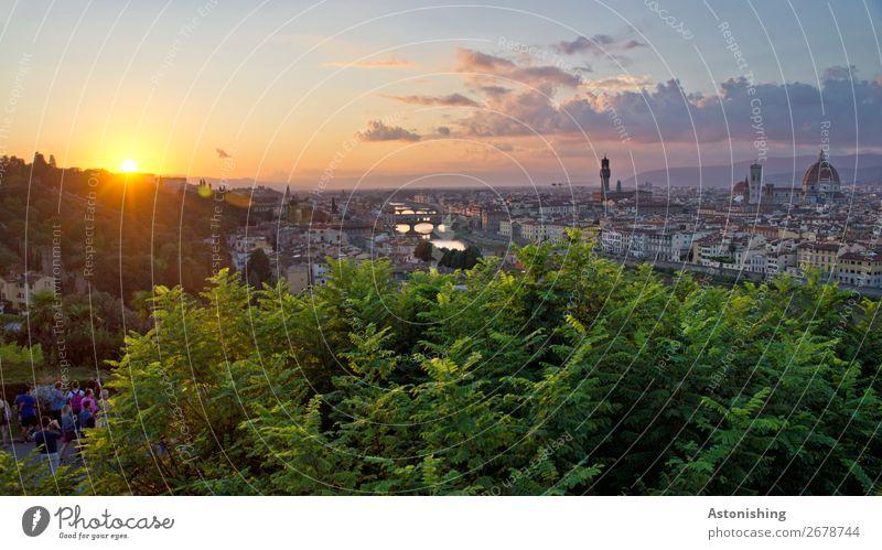 das letzte Licht des Tages Umwelt Natur Landschaft Himmel Wolken Horizont Sonne Sonnenaufgang Sonnenuntergang Sonnenlicht Sommer Wetter Schönes Wetter Pflanze