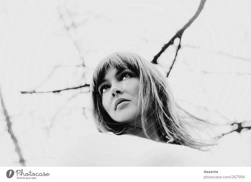 Mensch Frau Jugendliche schön Junge Frau 18-30 Jahre Gesicht Erwachsene Wärme feminin Haare & Frisuren fliegen Kopf glänzend träumen elegant