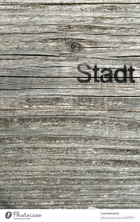 Umweltzone Stadt Park Holz Zeichen Schriftzeichen alt fest natürlich retro trocken Erholung modern nachhaltig Umweltschutz Wachstum Häusliches Leben Lifestyle