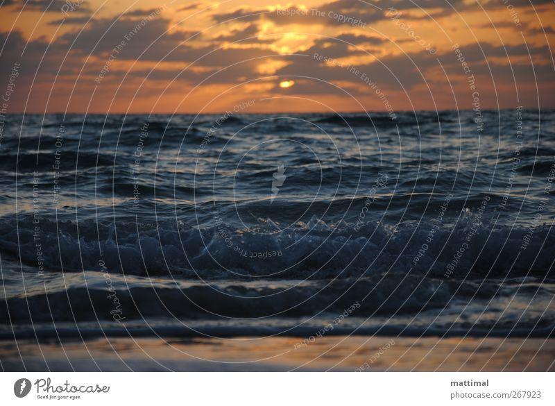 Sonnenaufgang Schwimmen & Baden Ferien & Urlaub & Reisen Sommer Strand Meer Wellen Erholung Freizeit & Hobby Horizont Außenaufnahme Morgen Sonnenuntergang