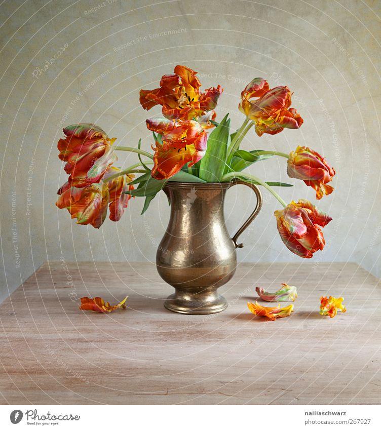 Stillleben mit Tulpen Kunst Natur Pflanze Frühling Blume Blüte Blumenstrauß Vase Holz Metall ästhetisch braun grün rot Zeit welk verblüht Farbfoto mehrfarbig