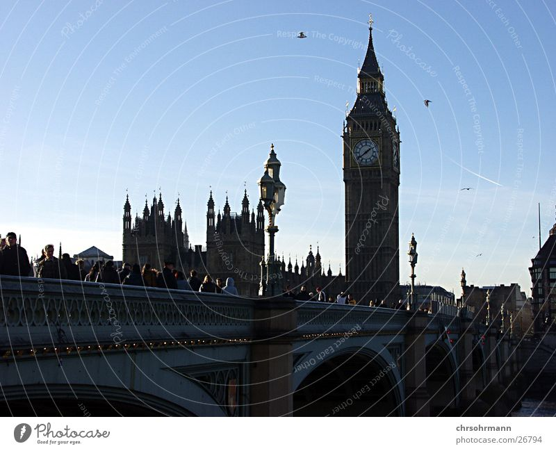 Big Ben II Vogel Brücke Turm London Houses of Parliament Themse