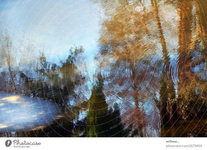 jahreszeiten Wasser Frühling Herbst Winter Klima Teich See kalt Reflexion & Spiegelung Tauwetter Eis tauen herbstlich Farbfoto Außenaufnahme