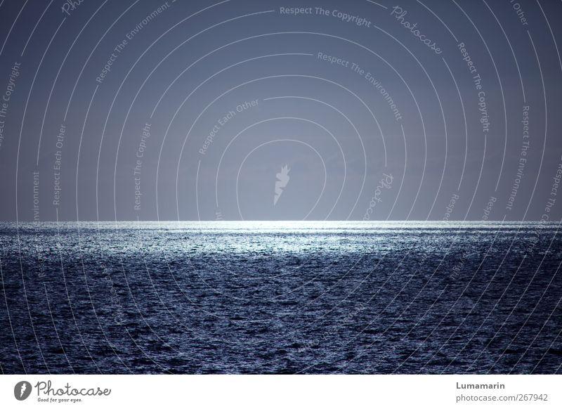 all the little lights blau Wasser schön Meer Ferne Umwelt Landschaft dunkel kalt Luft Stimmung Horizont glänzend groß leuchten Urelemente