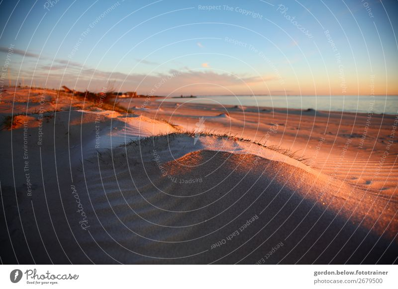 unendliche Weiten Himmel Ferien & Urlaub & Reisen Natur Pflanze Wasser Landschaft Meer Wolken Freude Ferne Strand Leben Herbst Glück Gras Freiheit