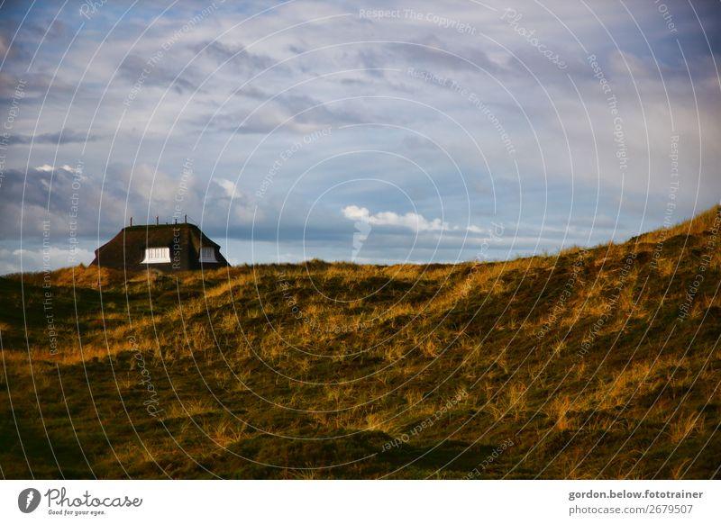 Haus am Meer Himmel Ferien & Urlaub & Reisen Natur Pflanze blau grün weiß Landschaft Erholung Wolken Freude Fenster schwarz gelb Frühling