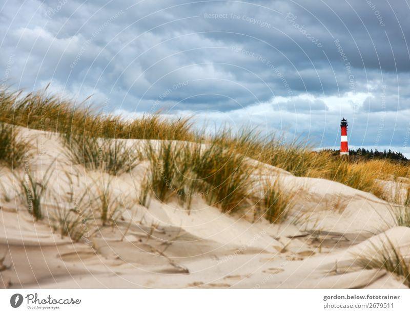 Sommerträume Ferien & Urlaub & Reisen Abenteuer Ferne Sommerurlaub Natur Pflanze Himmel Wolken Wind Baum Gras Strand Nordsee Menschenleer Leuchtturm Sand