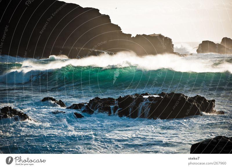 Feierabendbrandung Wasser Sonnenaufgang Sonnenuntergang Wind Felsen Wellen Küste Meer blau grün Erholung Brandung Teneriffa Gischt Klippe Gedeckte Farben