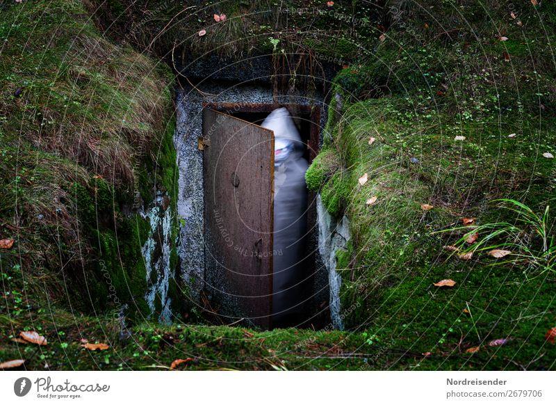 Firlefanz | Tür in eine andere Dimension Halloween Mensch androgyn 1 Erde Moos Wald Gebäude beobachten Jagd Aggression außergewöhnlich bedrohlich dunkel