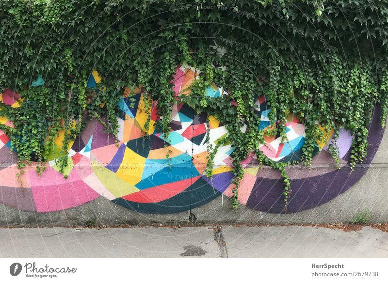 Natur vs Kunst Kunstwerk Mauer Wand Beton Graffiti außergewöhnlich trendy natürlich Stadt mehrfarbig grün Wachstum zudecken Efeu Kletterpflanzen Naturwuchs