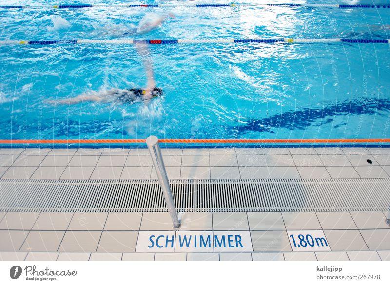 bademeisterperspektive Mensch Wasser Sport Linie Schwimmen & Baden Wassertropfen Schwimmbad Fitness Sport-Training Sportveranstaltung Wassersport Schwimmsportler Sportstätten Schwimmhalle Rückenschwimmen