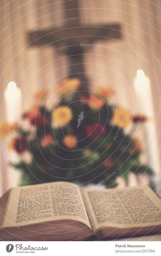 Predigt Tod Bewegung Holz Religion & Glaube Feste & Feiern Kraft Beginn Kirche leuchten Hilfsbereitschaft Sicherheit lesen berühren Vertrauen Christliches Kreuz