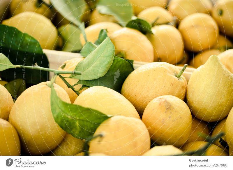 Limonadenrohstoff Lebensmittel Frucht Ernährung Vegetarische Ernährung frisch lecker sauer gelb Foodfotografie Zitrone zitronengelb Zitronenschale Markt