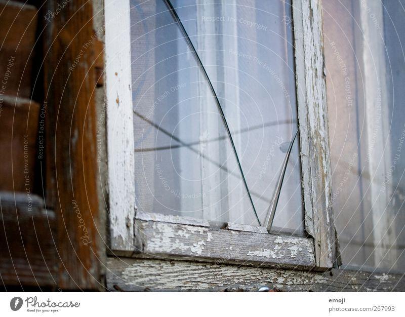 MyKind of Love Mauer Wand Fassade Fenster Fensterscheibe Glas Glasscheibe alt kaputt Scherbe Riss Farbfoto Außenaufnahme Menschenleer Tag Dämmerung