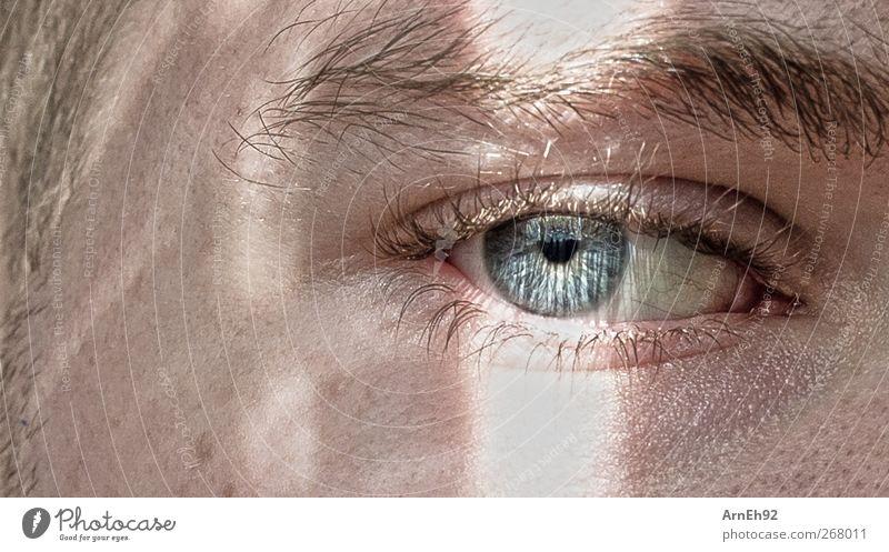Augenblick Mensch maskulin Junger Mann Jugendliche Kopf Haare & Frisuren 1 18-30 Jahre Erwachsene blond kurzhaarig Dreitagebart blau Verschwiegenheit Farbfoto