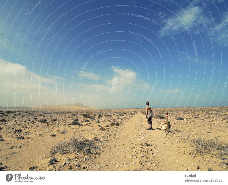 Weg durch die Wüste Mensch Himmel Natur blau Ferien & Urlaub & Reisen Sonne Sommer Wolken Einsamkeit Ferne Landschaft gelb Freiheit Sand Erde wandern
