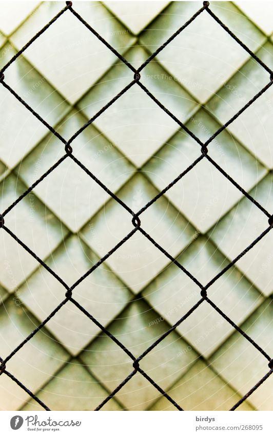 Formverwandtschaft 2 Mauer Wand Wandverkleidung ästhetisch außergewöhnlich Sicherheit Schutz Design Ordnung Symmetrie Stadt Maschendrahtzaun Verbindung
