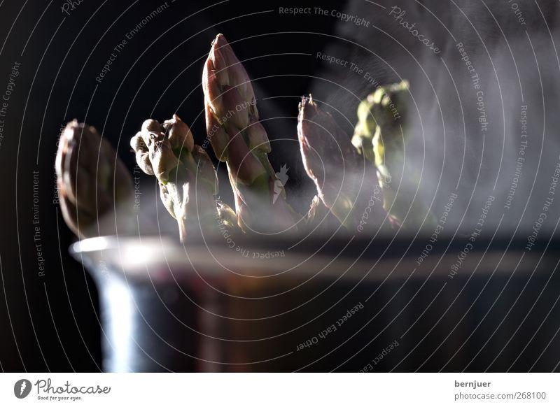 Veronika grün Lebensmittel Frühling Metall Kochen & Garen & Backen Gemüse silber Topf saftig Wasserdampf Spargel roh Spargelkopf Spargelspitze
