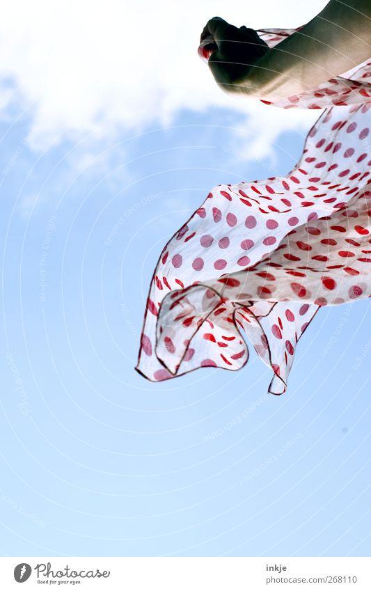 Grüße gen Süden Lifestyle Freude Freizeit & Hobby Spielen Ferien & Urlaub & Reisen Ferne Sommer Leben Hand 1 Mensch Tuch Punkt festhalten fliegen Fröhlichkeit