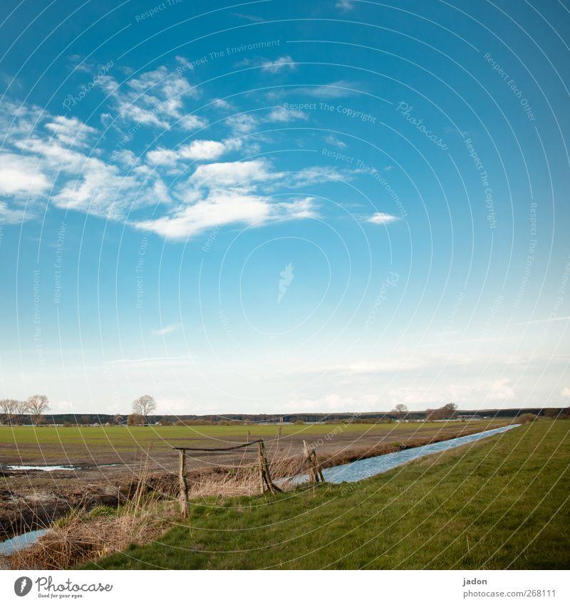 als der winter fortging. ruhig Umwelt Natur Landschaft Erde Wasser Himmel Wolken Frühling Gras Wiese Feld Weide ästhetisch Unendlichkeit blau grün Fernweh