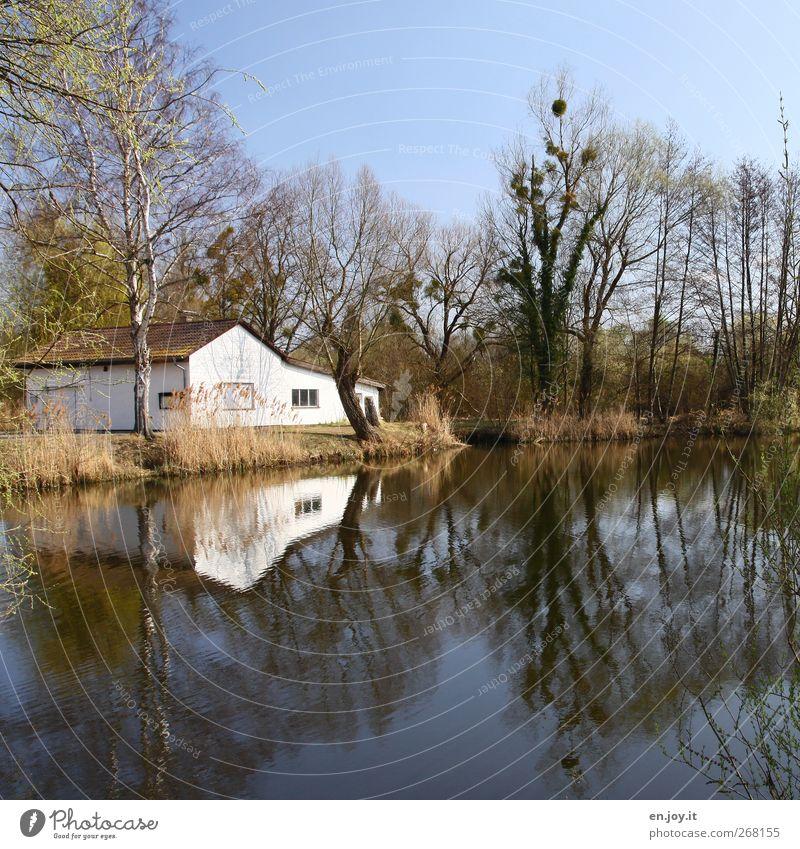 Haus am See ruhig Traumhaus Natur Landschaft Wasser Wolkenloser Himmel Baum Seeufer Einfamilienhaus Hütte Gebäude Häusliches Leben einfach blau grün Gefühle