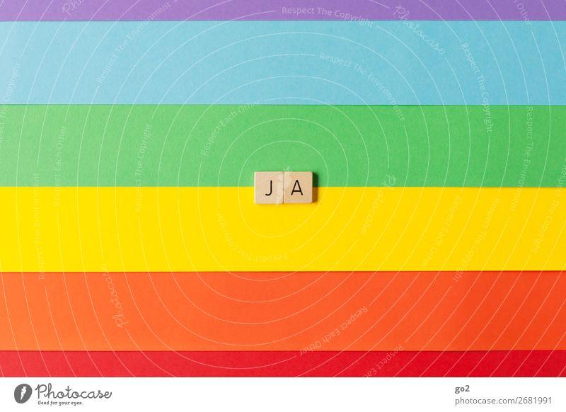 Ja! Spielen Feste & Feiern Hochzeit Papier Dekoration & Verzierung Holz Zeichen Schriftzeichen ästhetisch Fröhlichkeit einzigartig positiv mehrfarbig Gefühle