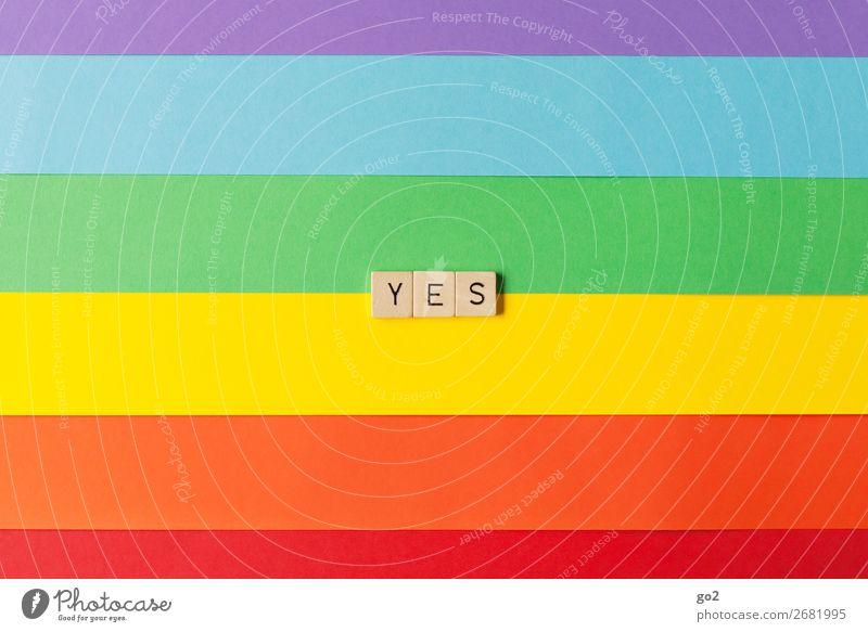 Yes Spielen Feste & Feiern Hochzeit Papier Holz Zeichen Schriftzeichen ästhetisch positiv mehrfarbig Gefühle Freude Glück Fröhlichkeit Lebensfreude Vorfreude