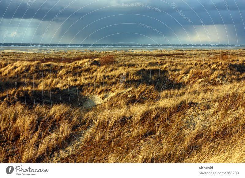 Urelemente Natur Sand Luft Wasser Wolken Gewitterwolken Horizont Klima Klimawandel Wetter Schönes Wetter schlechtes Wetter Wind Regen Wellen Küste Nordsee Insel