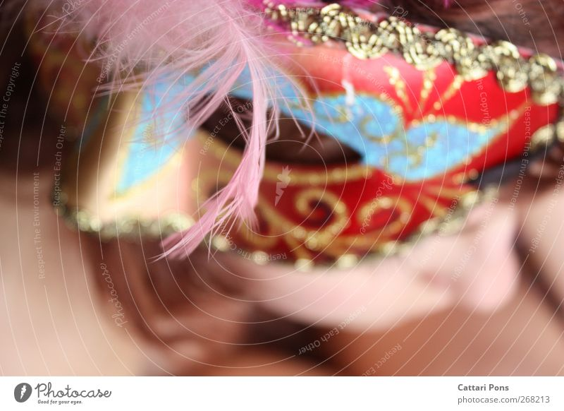 illusions of herself Karneval feminin 1 Mensch Accessoire Maske hell einzigartig dünn mehrfarbig Coolness Einsamkeit verstecken unerkannt Karnevalskostüm Feder