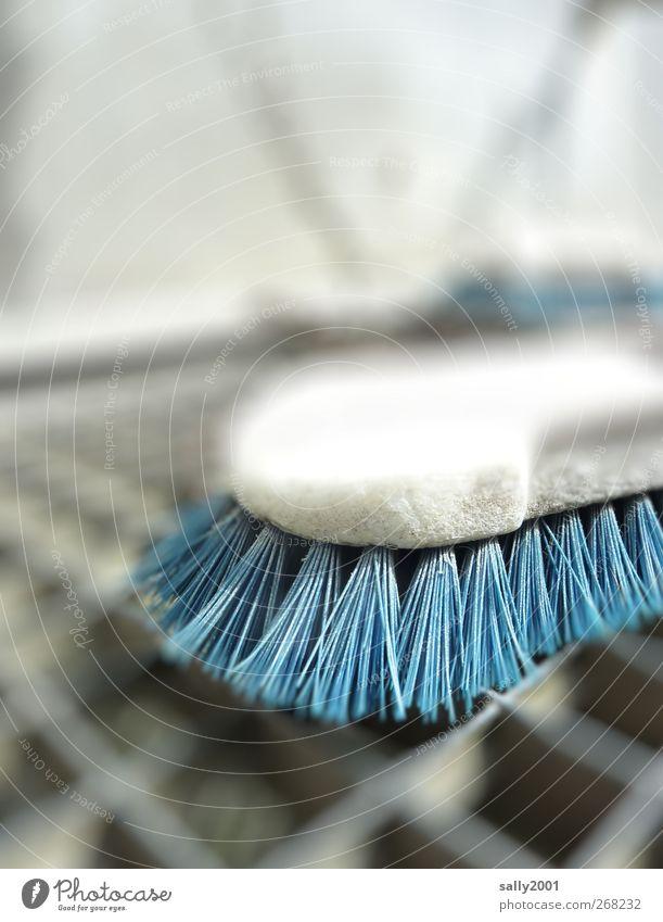 Blue cleaning Körperpflege Bürste Gitterrost Reinigen dreckig Sauberkeit blau bürsten hart Reinlichkeit borstig Borsten Putztag Farbfoto Außenaufnahme