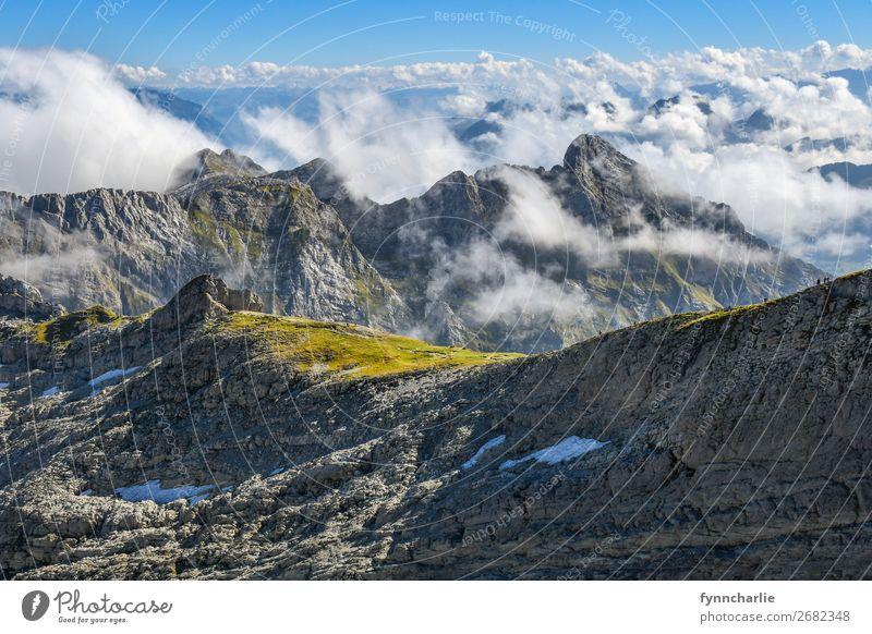 Bergwelten Umwelt Natur Landschaft Pflanze Urelemente Erde Luft Himmel Wolken Sonne Wetter Schönes Wetter Wind Baum Gras Felsen Alpen Berge u. Gebirge Gipfel