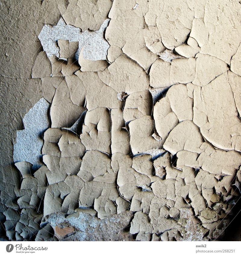 Guter alter Jahrgang Farbe schwarz Wand grau Mauer Linie Wandel & Veränderung trist Vergänglichkeit Spuren verfallen historisch Vergangenheit Verfall trashig