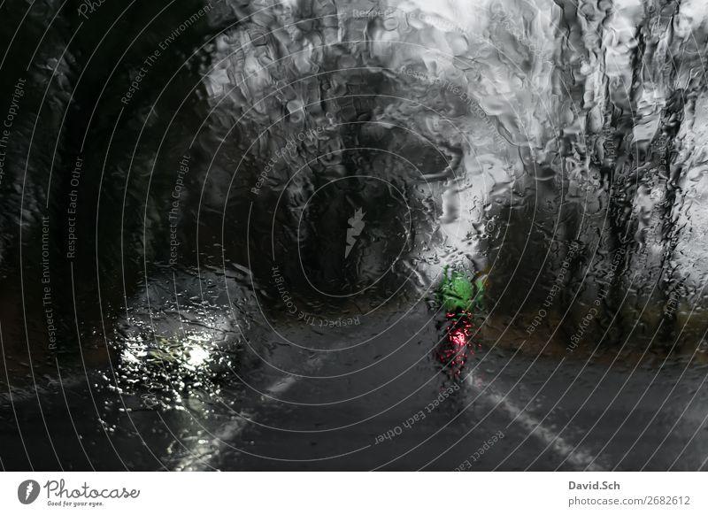 Fahrradfahrer fährt vor einem Auto bei Regen Mensch Ferien & Urlaub & Reisen grün dunkel Straße Bewegung grau PKW Verkehr Fahrradfahren gefährlich nass