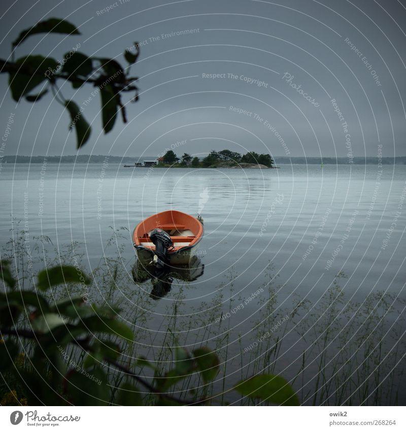 Vor Anker Umwelt Natur Landschaft Pflanze Urelemente Wasser Himmel Wolken Horizont Klima Schönes Wetter Baum Blatt Küste Insel Fischerboot Motorboot liegen
