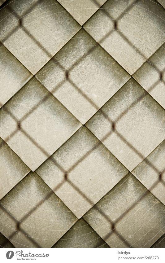 Formverwandtschaft 3 Mauer Wand Wandverkleidung ästhetisch außergewöhnlich Schutz Design Symmetrie Stadt Maschendrahtzaun Dachziegel Fassadenverkleidung