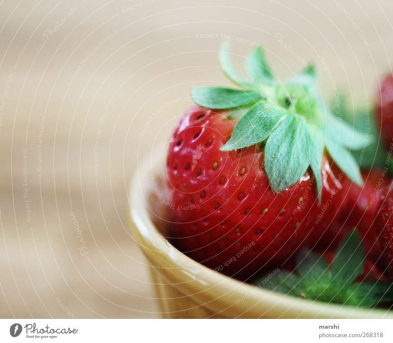 strawberry day Lebensmittel Frucht Ernährung grün rot Erdbeeren fruchtig lecker saftig Fitness geschmackvoll geschmacklich Appetit & Hunger Gesunde Ernährung