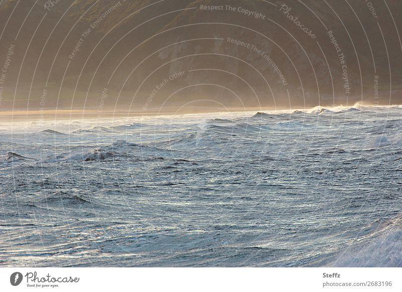 Nebel in Schottland Natur blau schön Wasser Landschaft Meer Strand Umwelt Küste Stimmung gold Wetter Wellen Seeufer Bucht Nordsee