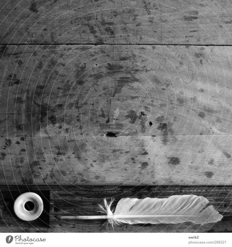 Schreibmaschine Feder Schreibfeder Schulbank Holz liegen warten alt einfach historisch Spitze grau schwarz weiß gewissenhaft Vorsicht Gelassenheit geduldig