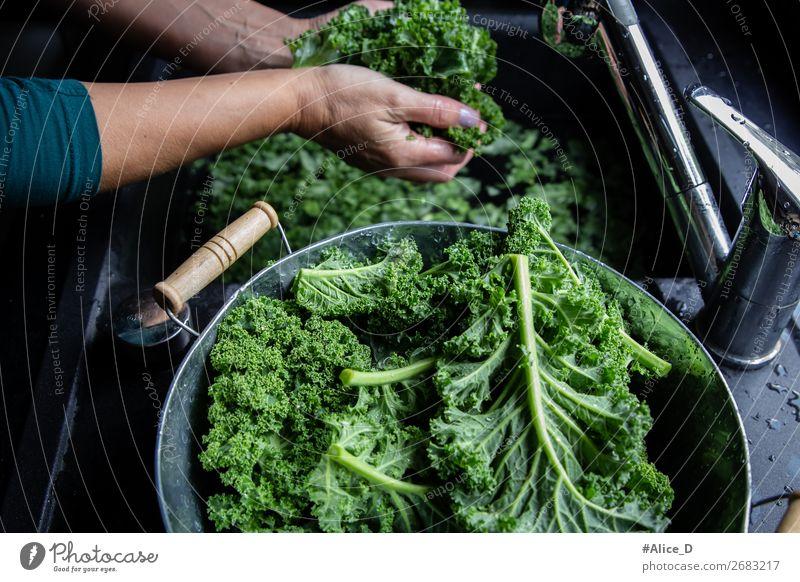 Grünkohl waschen Lebensmittel Gemüse Salat Salatbeilage Kohl Grünkohlblatt Ernährung Bioprodukte Vegetarische Ernährung Diät Fasten Schalen & Schüsseln