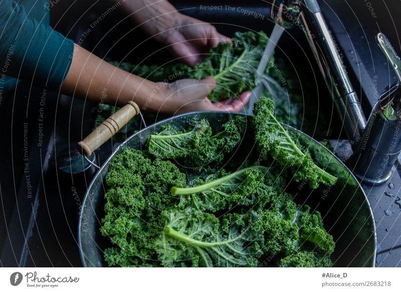 Frische grünkohlblätter waschen am Wasserhahn Lebensmittel Gemüse Salat Salatbeilage Kohl Ernährung Bioprodukte Vegetarische Ernährung Diät Fasten