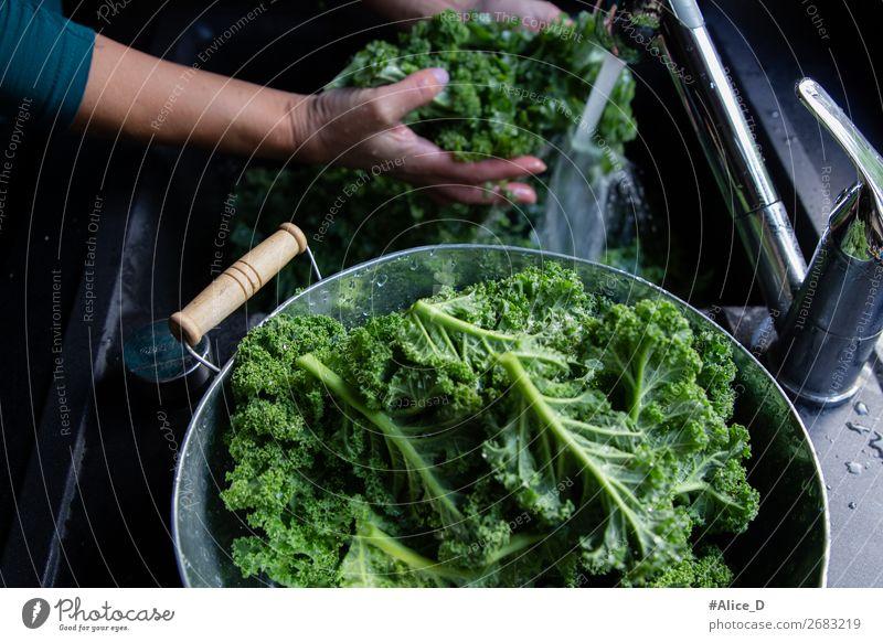 Grünkohl Waschen winter superfood Lebensmittel Gemüse Salat Salatbeilage Kohl Grünkohlblatt Ernährung Bioprodukte Vegetarische Ernährung Diät Fasten Lifestyle