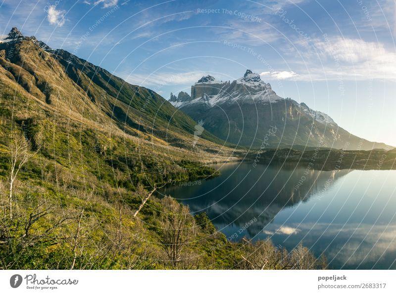 Paradies am Ende der Welt Umwelt Natur Landschaft Pflanze Erde Luft Wasser Himmel Sonnenlicht Sommer Herbst Wetter Schönes Wetter Schnee Blume Gras Sträucher