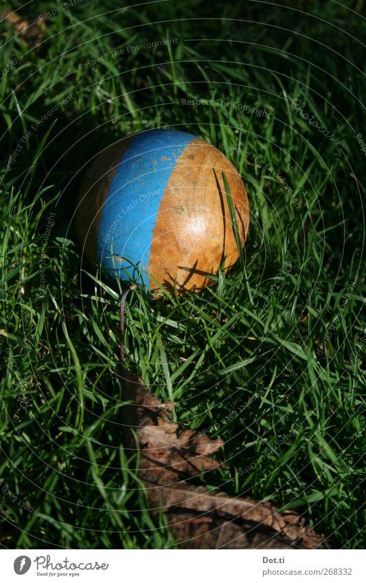Croquet Freizeit & Hobby Natur Gras Kugel Streifen retro rund blau Holzkugel altmodisch bemalt Farbfoto Außenaufnahme Nahaufnahme Strukturen & Formen